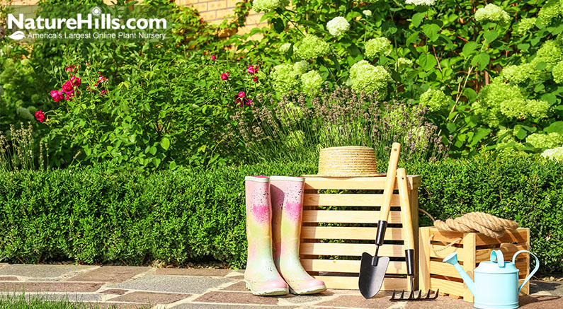 Landscaping And Garden Tools