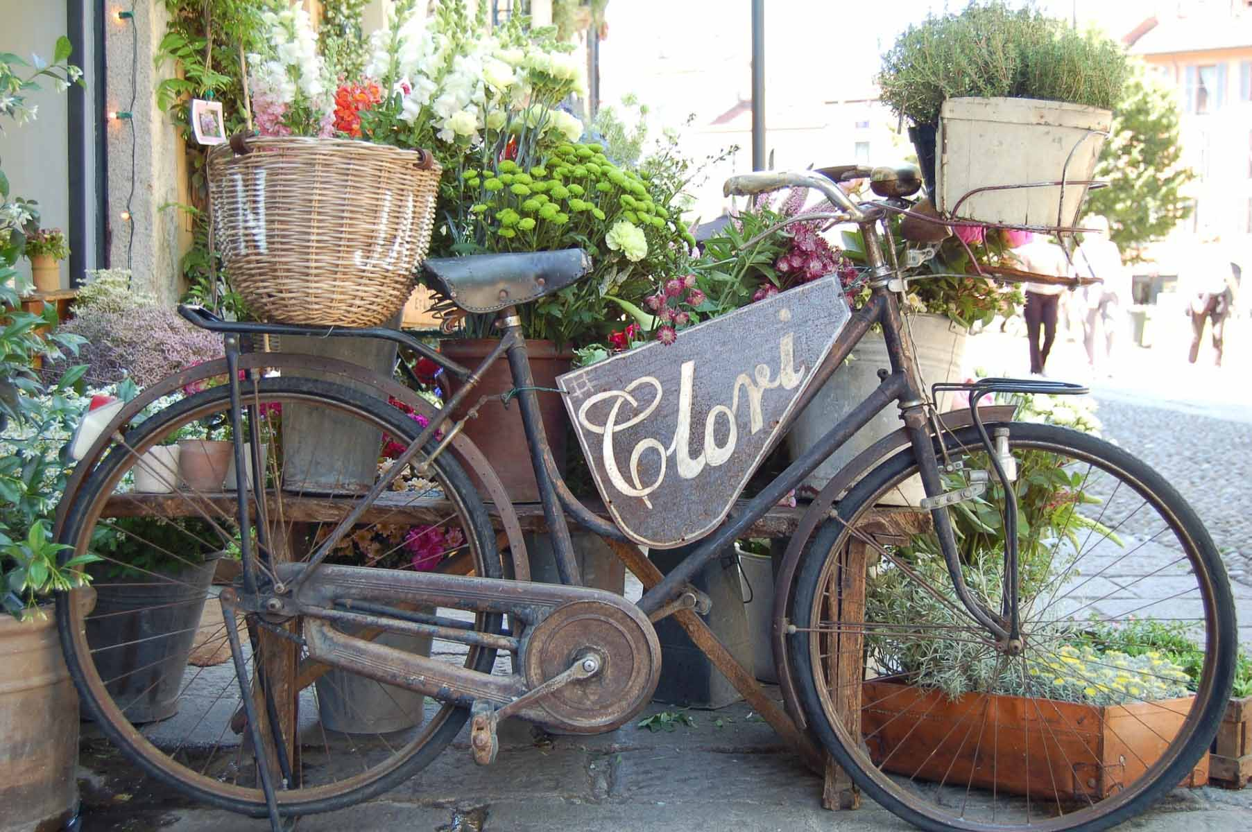 Bicycle Container Garden