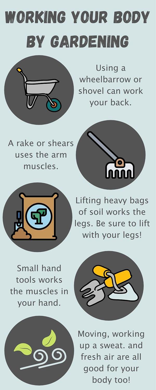 health benefits of gardening infographic