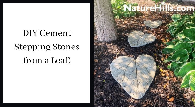 DIY Stepping Stones for the garden