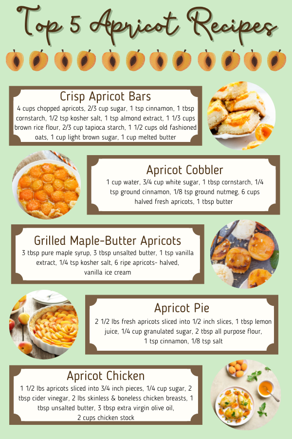 Picture of recipes with apricots in them