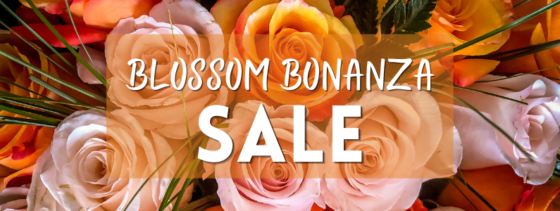 Roses & Hydrangeas | 25% -45% Off