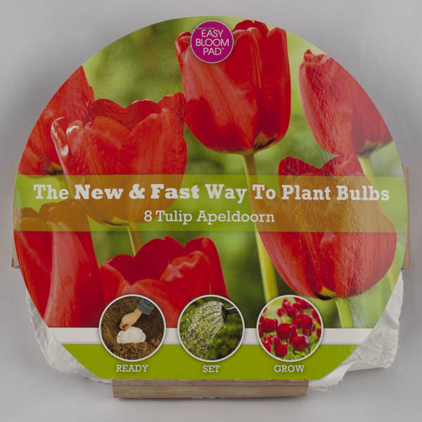Image of Apeldoorn Tulip Easy Bloom Pad