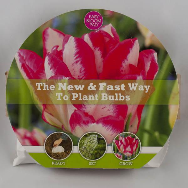 Cartouche Tulip Easy Bloom Pad