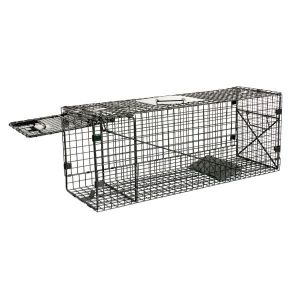 Humane Way Foldable Metal Animal Trap 32 Inch x 12 Inch x 10 Inch