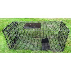 Humane Way Foldable Metal Animal Trap 42 Inch x 18 Inch x 16 Inch