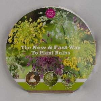Mixed Allium Easy Bloom Pad