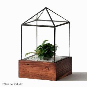 Clear House Terrarium