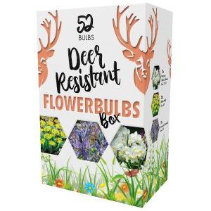 Deer Resistant Flower Bulb Box