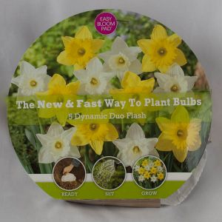 Flash Easy Bloom Pad