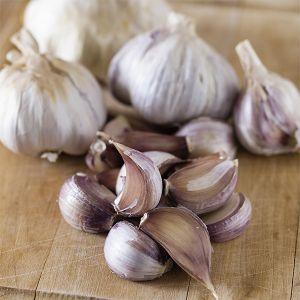 Harvest Garlic Blend