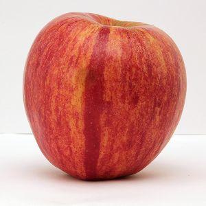 KinderKrisp™ Apple Tree