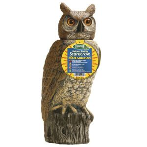 Dalen Solar Rotating Head Owl