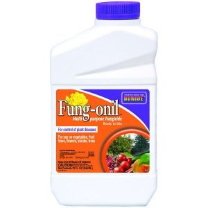 Bonide Fung-onil Fungicide Concentrate