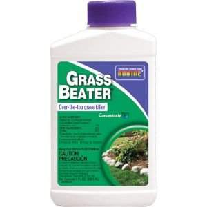 Bonide Grass Beater Concentrate
