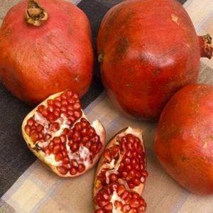 Red Silk Pomegranate Tree