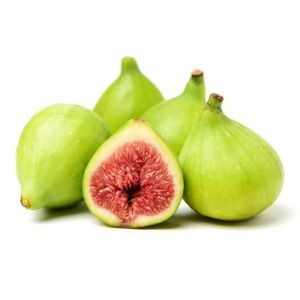 Excel Fig Tree