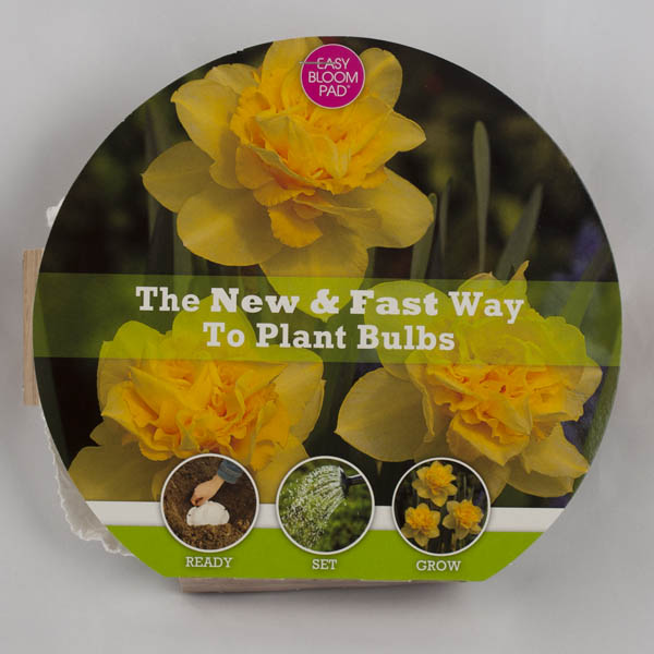 Dick Wilden Daffodil Easy Bloom Pad