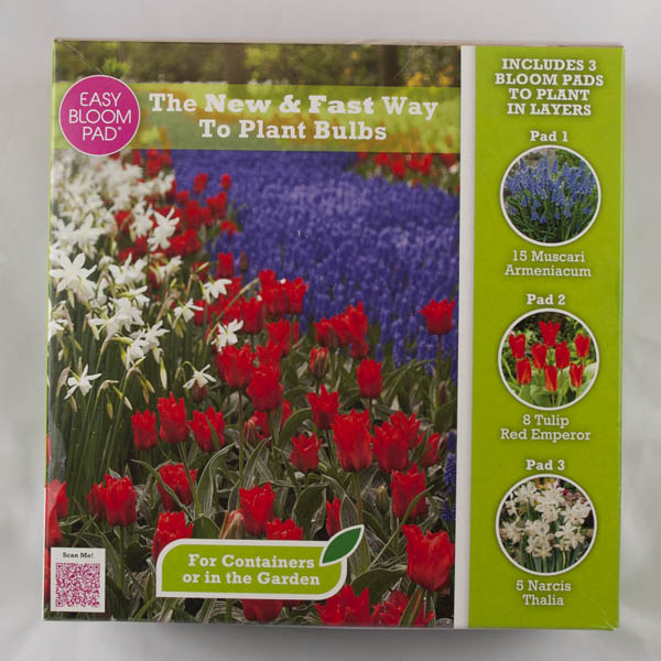 Image of Instant Bulb Garden in a Box Easy Bloom Pad