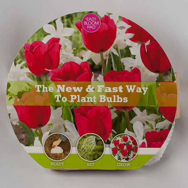 Glitz Easy Bloom Pad