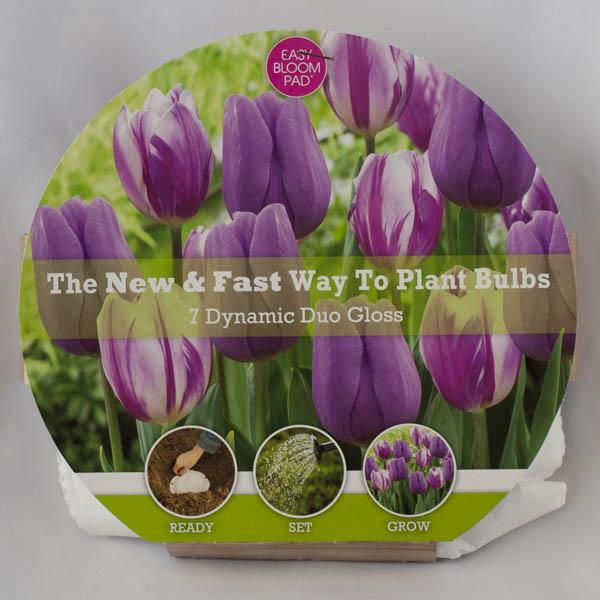 Gloss Easy Bloom Pad