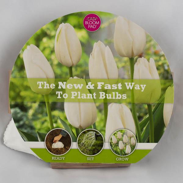 Image of Hakuun Tulip Easy Bloom Pad