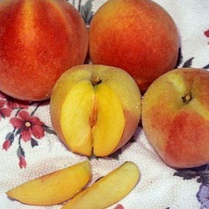 Harken Peach Tree