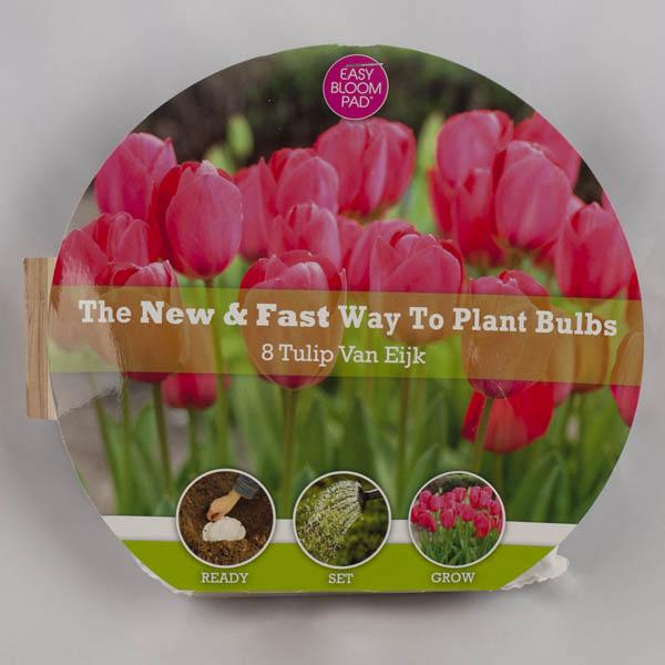 Van Eijk Tulip Easy Bloom Pad