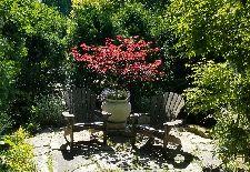 Stressed? Create a Meditation Garden