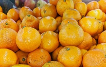 The Era of the Mandarin