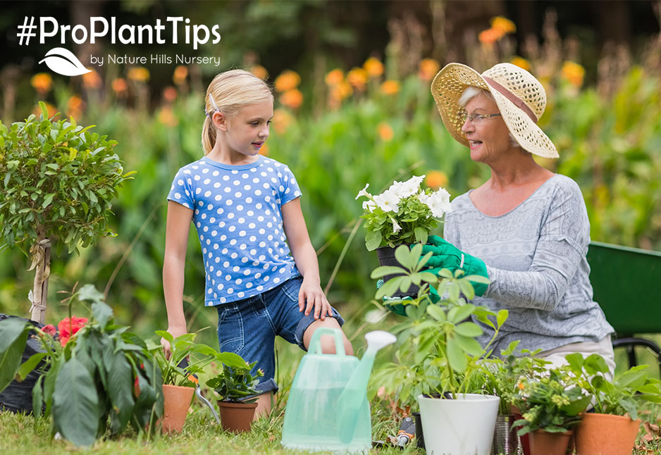 The Many Health Benefits of Gardening!