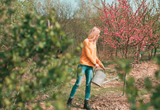 Top 10 Landscaping Tips for Millennials (& Other Newbies)