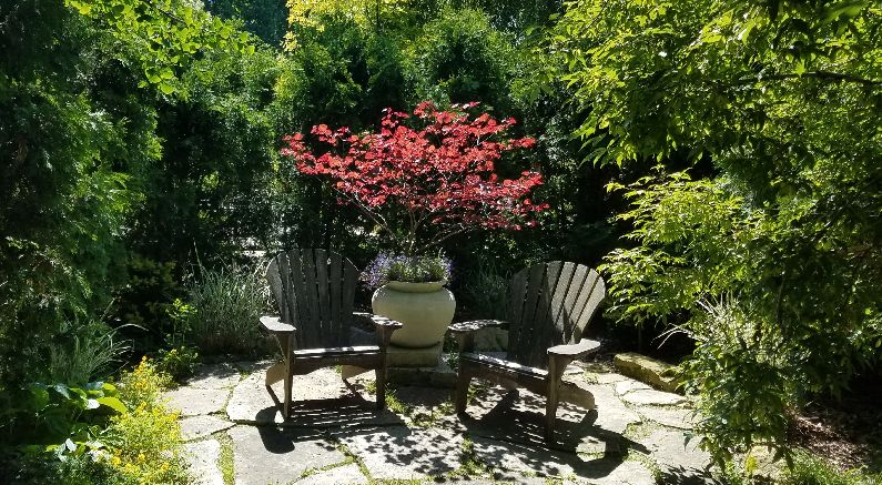 Create a Meditation Garden