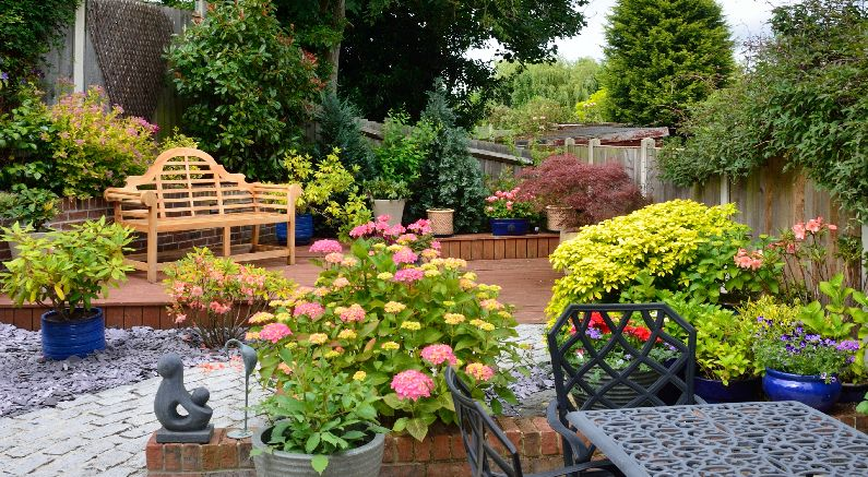 Plant a low maintenance garden with help from Nature Hills