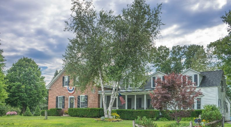 Lovely River Birch graces a home with shade and beauty