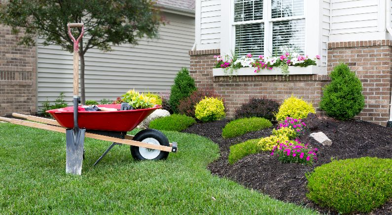 Landscaping With Wheelbarrow And Shovel