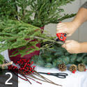 Step two creating outdoor winter container garden