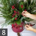 Step Eight Creating Outdoor Winter Container Garden