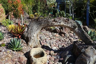 Use natural elements in low maintenance succulent gardens