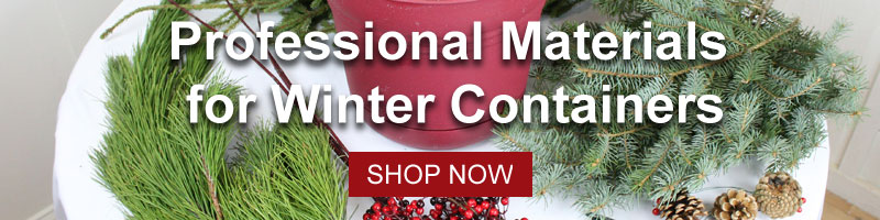 Shop Professional Materials for Winter Containers