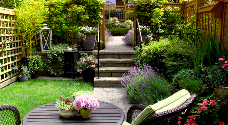 Small Space Gardening landscape
