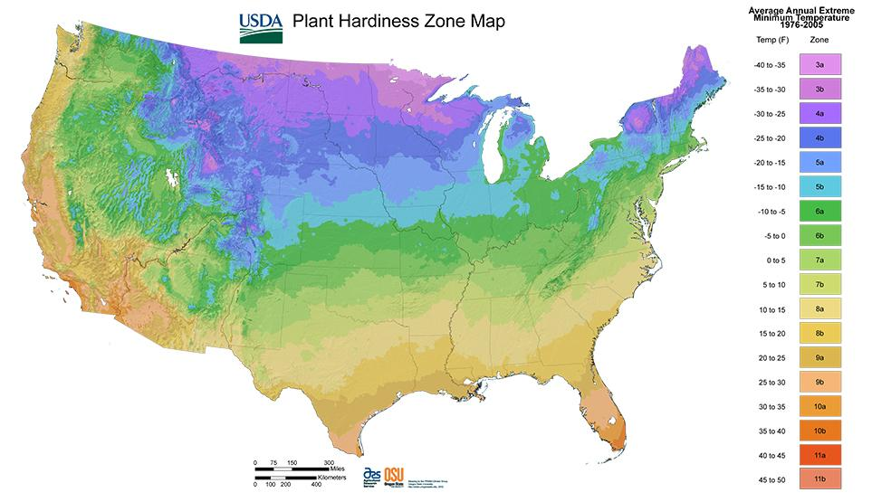 Know your Growing Zone to make the best plant investments