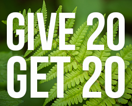 Give 20 Get 20