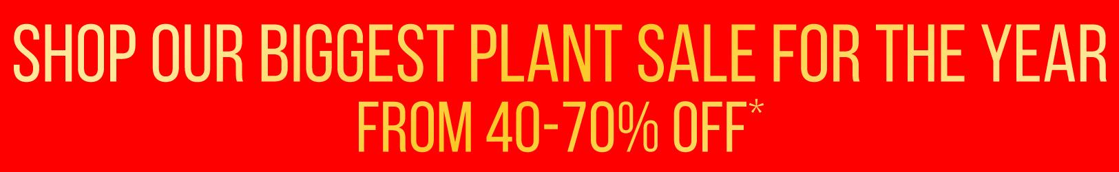 lower - biggest plant sale class=