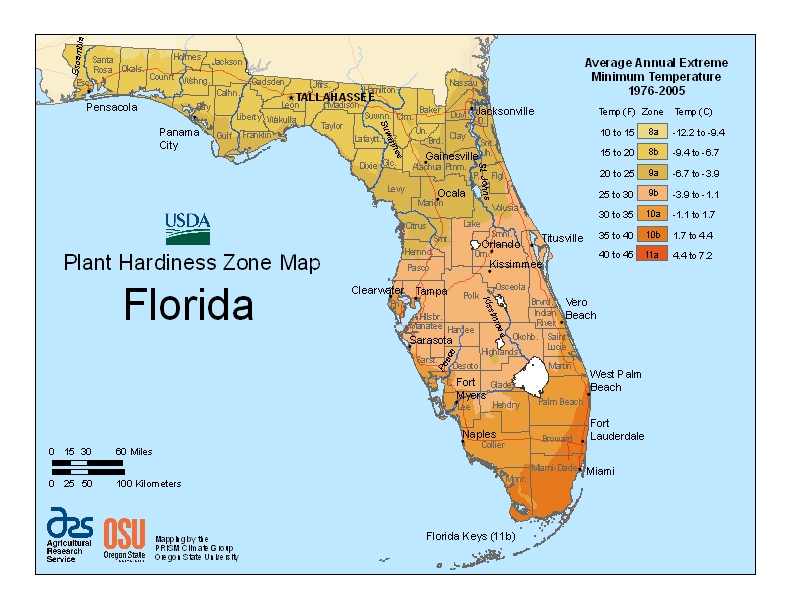 Florida Plant Zone Map