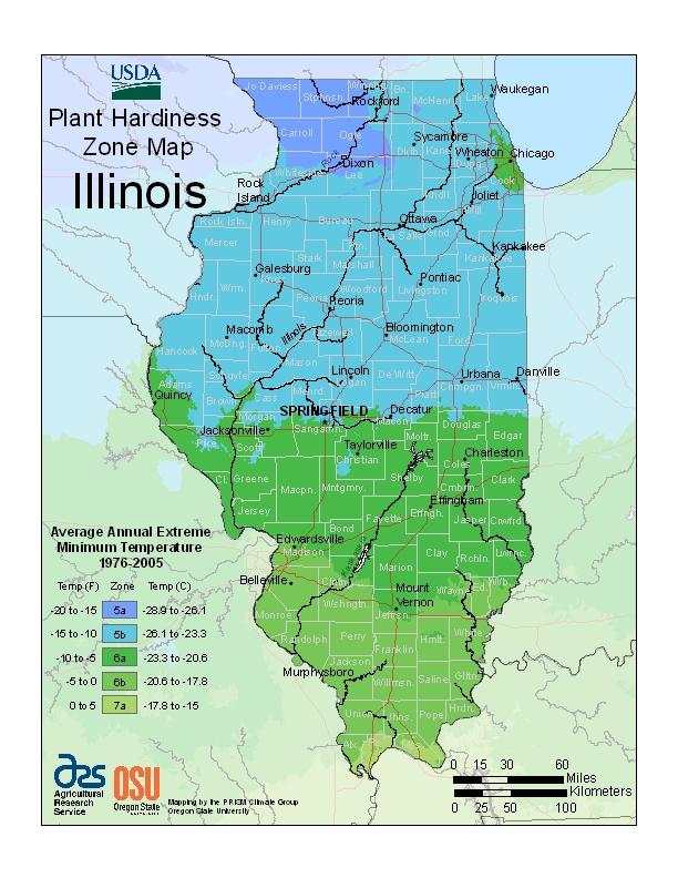 Illinois Trees Amp Shrubs For Sale Nature Hills