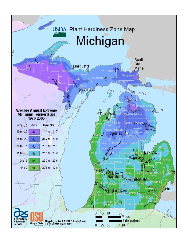 Michigan Plant Zone Map