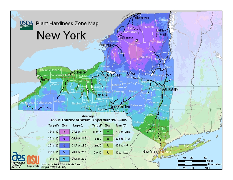 New York Plant Zone Map