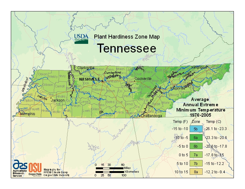 Tennessee Plant Zone Map
