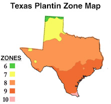 Texas Plant Zone Map